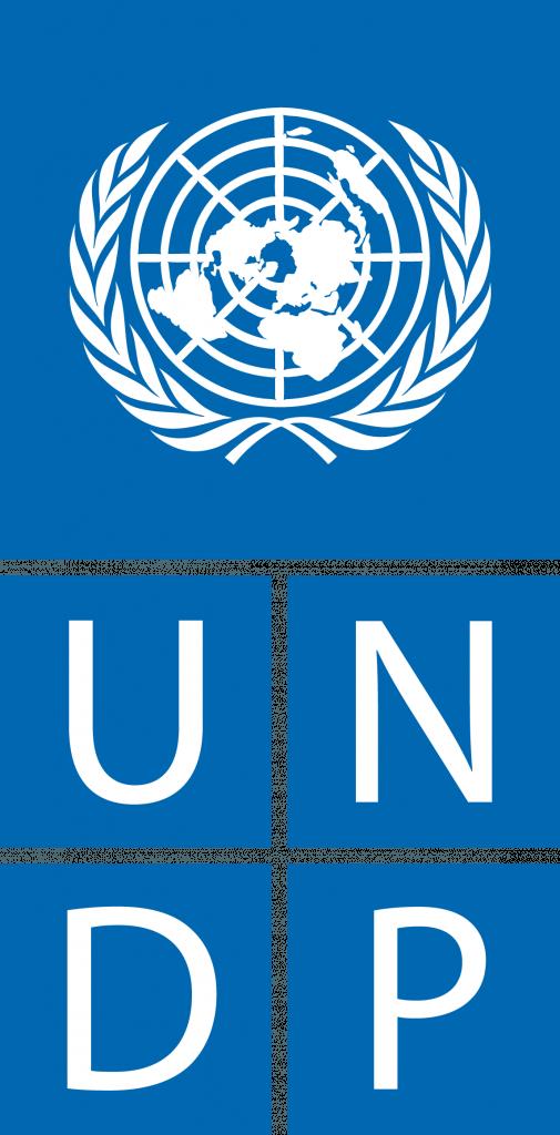 undp_logo-505x1024